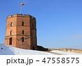 ゲディミナス城(ヴィリニュス/リトアニア) 47558575