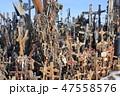 十字架の丘(リトアニア/シャウレイ) 47558576