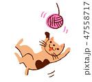 毛糸で遊ぶネコ 47558717