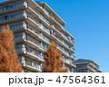 住宅 家 建物の写真 47564361