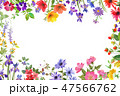 花 フレーム 水彩のイラスト 47566762