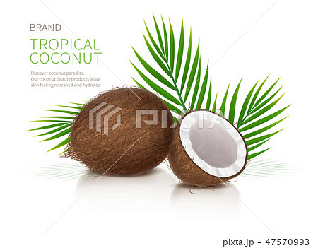 Whole and half broken coco nut 47570993