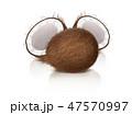 ヤシ ベクトル ココナッツのイラスト 47570997