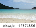 渡嘉敷のビーチ 47571356