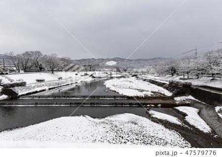賀茂川 - 雪景色 47579776