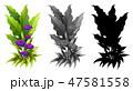 植物 フラワー 花のイラスト 47581558