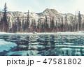 ウィンター ウインター 冬の写真 47581802
