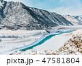 ウィンター ウインター 冬の写真 47581804