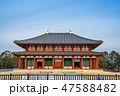 興福寺 国宝 中金堂の写真 47588482