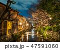 京都 祇園 祇園白川の写真 47591060