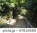 展望台 道 歩くの写真 47610489