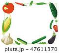 野菜 夏野菜 ベクターのイラスト 47611370