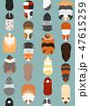ベクター 動物 モルモットのイラスト 47615259