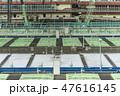 日本 コピースペース 観光の写真 47616145