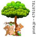 動物 くま クマのイラスト 47616781