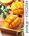食べ物 フルーツ 実の写真 47622084