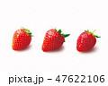 いちご フルーツ 果物の写真 47622106