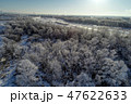 霧氷 冬 早朝の写真 47622633