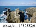 東尋坊 断崖絶壁 柱状節理の写真 47625529