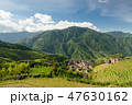 景色 風景 米の写真 47630162
