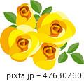 バラ 薔薇 花のイラスト 47630260