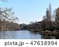 日本 池 橋の写真 47638994