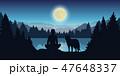 おおかみ オオカミ 狼のイラスト 47648337