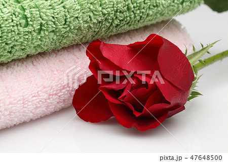 Pink and green coloured towels next to rose 47648500