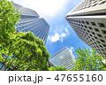 新緑 オフィス街 ビジネス街の写真 47655160