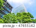 高層ビル ビル 新緑の写真 47655162