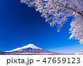富士山 積雪 冬の写真 47659123