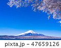 富士山 積雪 冬の写真 47659126