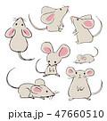 ネズミ 動物 可愛いのイラスト 47660510
