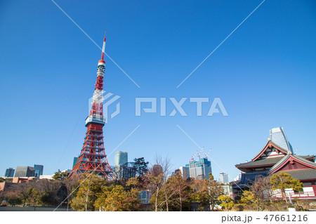 東京タワー 47661216
