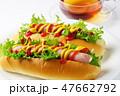 ホットドッグ パン 昼食の写真 47662792