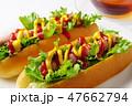 ホットドッグ パン 昼食の写真 47662794