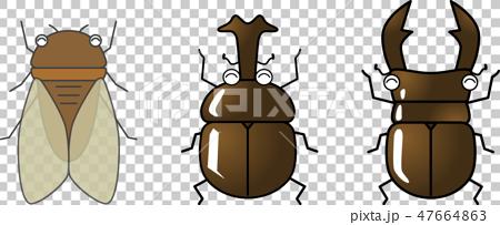 かわいい昆虫セット(クワガタ・カブトムシ・セミ)ベクター 47664863