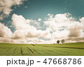 畑 麦 雲の写真 47668786