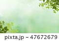 背景-新緑-グリーン 47672679