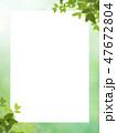 春 新緑 葉のイラスト 47672804