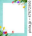 背景-花-壁-春-ブルー-チューリップ-ホワイトボード 47672900