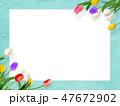 背景-花-壁-春-ブルー-チューリップ-ホワイトボード 47672902