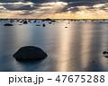 鵜ノ崎海岸 風景 日本海の写真 47675288