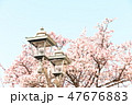 桜 47676883