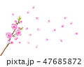 桃の花 水彩画 47685872