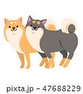 柴犬 犬 ポーズのイラスト 47688229
