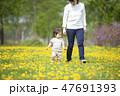 親子 散歩 花畑の写真 47691393