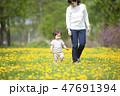 親子 散歩 花畑の写真 47691394