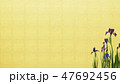 背景-和-和風-和柄-金箔-菖蒲 47692456