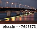 利根川 かもめ大橋 橋の写真 47695573